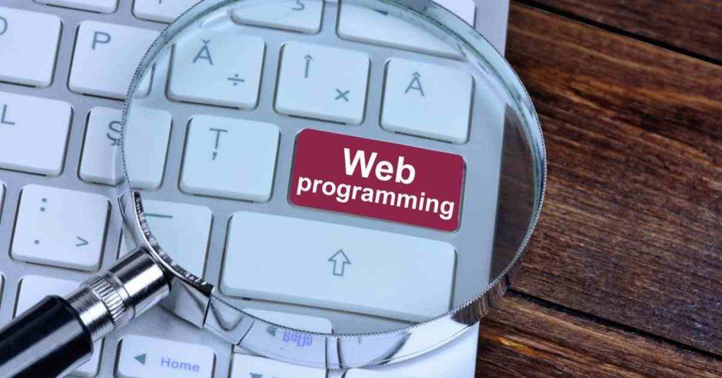 Best Programming Languages For Web Development